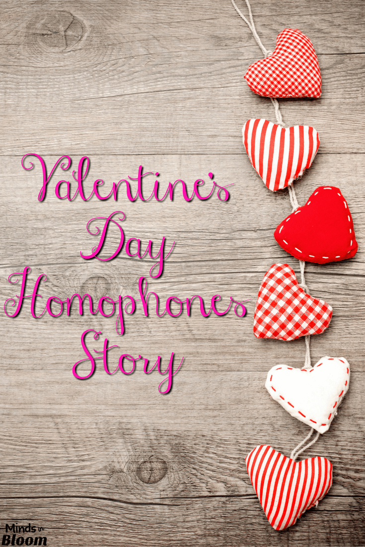 Homophones are tricky little buggers, and this Valentine's Day story has over 50 of them! Can your students find all of them throughout the story?