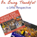 Is being thankful a relative idea? Can we truly be thankful for what we have? This Thanksgiving, I want to share two books with you that compare families from all over the world and how much food they can afford each week, as well as the amount of material belongings they have in their homes. Share these books with your students and start a dialogue about thankfulness and what it really means.
