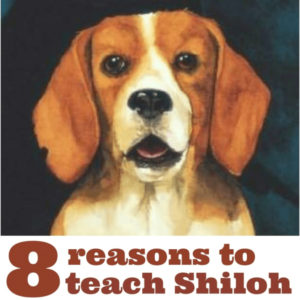 Shiloh is a wonderful book for elementary teachers to introduce to their students. If you're unsure whether you should teach Shiloh by Phyllis Reynolds Naylor, then check out this blog post with eight reasons why you should!