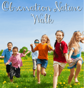 Observation Nature Walk