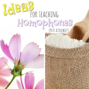 This list of ideas for teaching homophones will not only have your students mastering them before you know it, but they'll also have them learning and practicing homophones in fun, authentic ways! Teaching homophones doesn't need to be a challenge!
