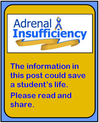 There can be a lot to handle when it comes to students' medical conditions and needs, but few are as important as Adrenal Insufficiency, which can be life-threatening. Click through to read more about what Adrenal Insufficiency is, how it needs to be handled and treated, and how you can raise awareness for this health condition.