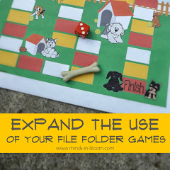 Expand the Use of Your File Folder Games!