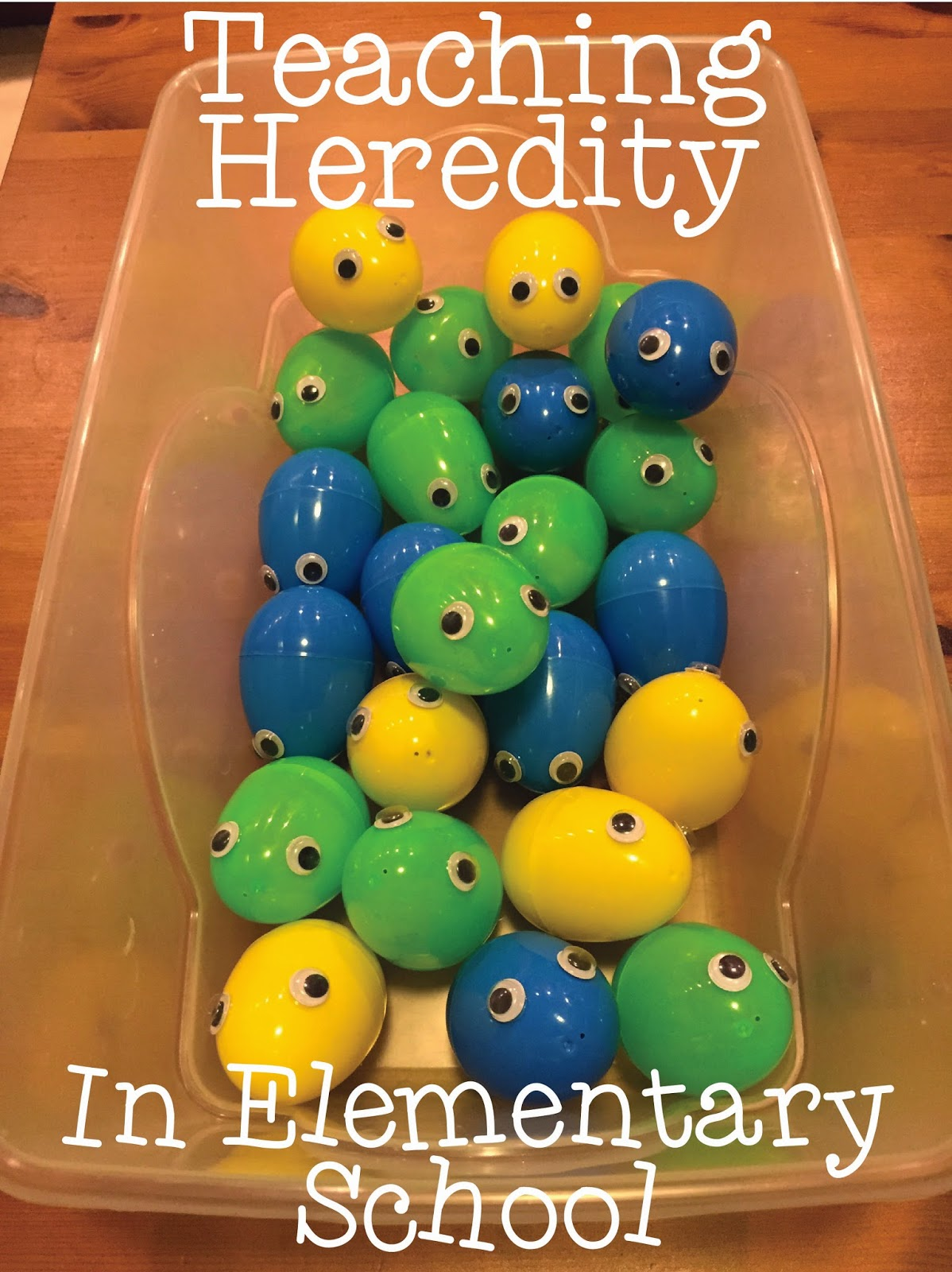 Heredity Pictures For Kids